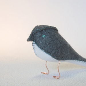 Charcoal Grey Finch